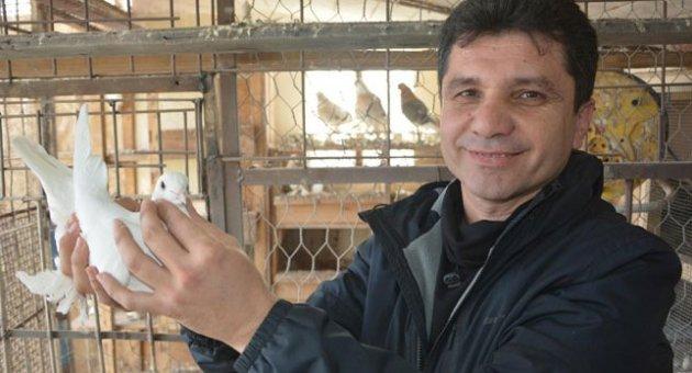 Evinin Bahçesinde 35 Güvercin Besliyor