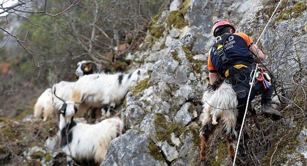 İnatçı Keçiler 3 Günde Kurtarıldı